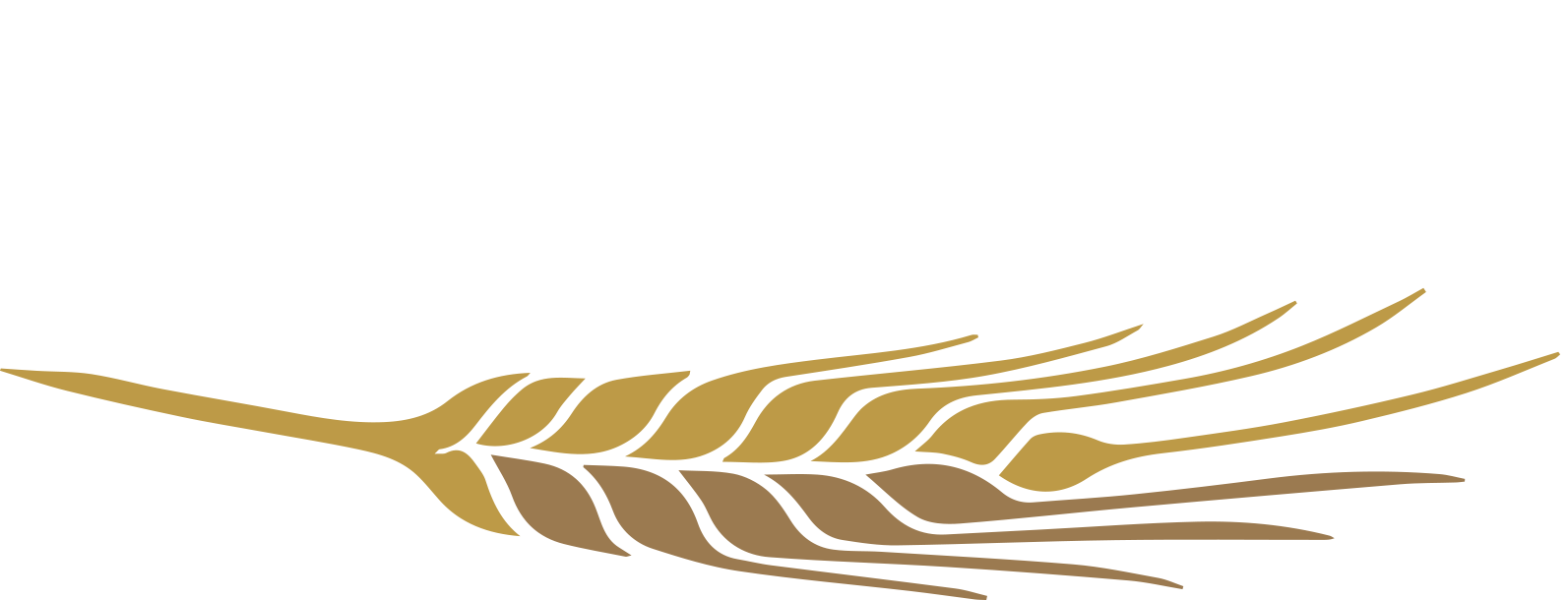 zlatyklas.cz